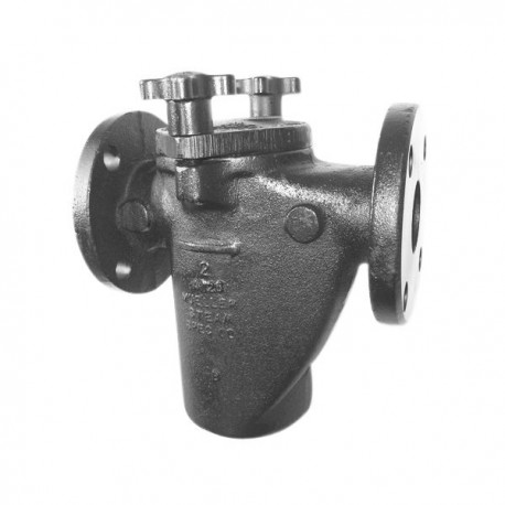 125F-B Mueller Steam Specialty Class 150 Aluminum Bronze Flanged End Basket Type Strainers