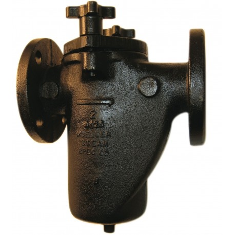 125F-CI Mueller Steam Specialty Class 125 Cast Iron Flanged End Basket Type Strainers